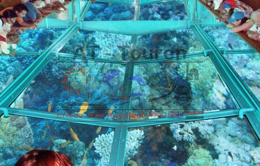 Ausflug mit dem Royal Seascope Glasbodenboot mit Schnorchelstop