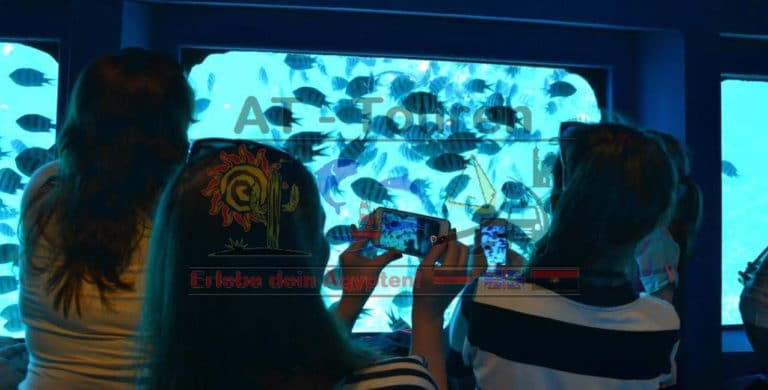 Royal_SeaScope_Glasboden_Boot_Hurghada_2_at-touren.de