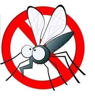 Stechmücken in Ägypten fernhalten