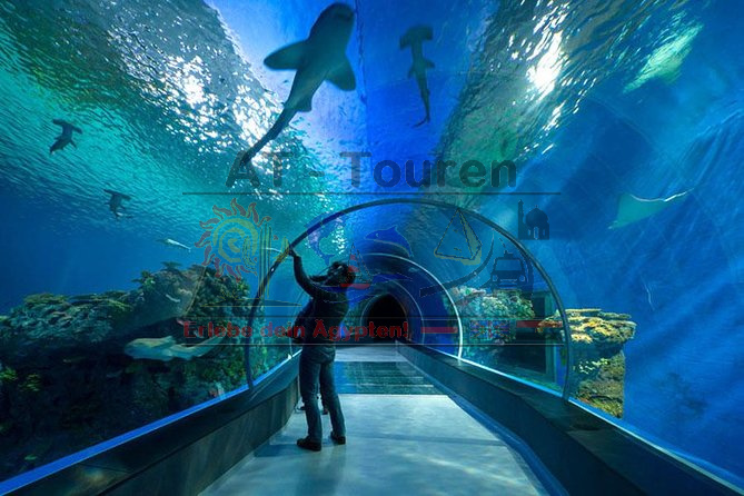 Grand Aquarium Hurghada - AT-Touren